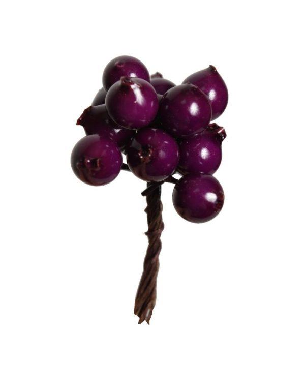 OZ10-jarzebina-fioletowa